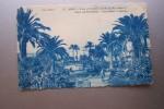 Y6 AA  NICE  Aloes Et Palmiers Jardin Du Roi Albert - Parks