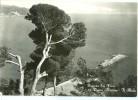 Italy, Riviera Dei Fiori, Diano Marina, Il Molo Unused Real Photo Postcard [P9707] - Imperia