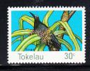 Tokelau MNH Scott #60 Birds: 30c Brown Noddy - Tokelau