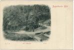 Markirch Ste Marie Aux Mines Edit Cellarius No  41 Rappoltsweiler Hohe ) Die Vogesen - Other Municipalities