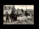 22 - LANNION - Le Marché Aux Cochons - Au Fond, L'Eglise De Brélévenez - 12 - Lannion