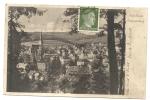 Bad Elster  (Allemagne, Saxe) : Blick Zum Beûnnenberg En1943  (oblitération). - Bad Elster