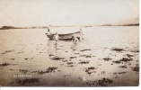 """RP - 4 LADS IN A ROWING BOAT """"SKYLARKING"""" 1907 - Non Classés"""