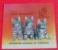 == Guinea - Bissau Block 1985 , Cats , Kartzen - Guinea-Bissau