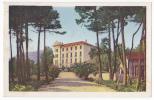 Cavalaire Sur Mer - Le Grand Hôtel - A Circulé En 1955, Colorisée, Cpsm 9x14 - Cavalaire-sur-Mer