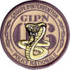 écusson ,Groupe D'Intervention Police Nationale NICE 06, Cobra - Police & Gendarmerie