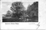 Souvenir De Fontaine L´Evêque 29: Un Coin Du Parc 1902 - Fontaine-l'Evêque