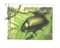 CAMBOGIA 900 R 2000  COD FRA.152 - Cambodia