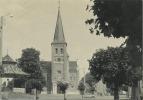 HALEN -  ZELEM  :  St. Lambertuskerk     ( GROOT FORMAAT   15 X  10.5 Cm ) - Halen