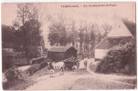 TEMPLOUX  En Route Pour Le Fays  Attelage - Namur