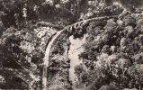 29591    Congo-Brazaville,  Moyen-Congo,  La  Ligne  Du  C.F.A.O.  Dans  Le  Mayombe,  NV  (scritta) - Brazzaville