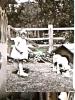 BAMBINA CANE  DOG CUCCIOLO S1960  DT16162 - Chiens
