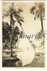 PAPEETE - PHOTO - DIM 9,6 X 14,3 - Polynésie Française
