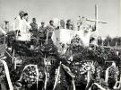 POLOGNE . MIASTKO. ZUPRO . Délégué Plénipotentiaire Fédération Anciens Combattants Alliés De L'Europe. 9 MAI 1981.  N°2 - Krieg, Militär
