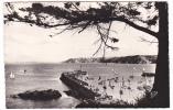 20742 BINIC Vue Generale Le  Port -1635 CAP -jetée - Binic