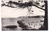 20742 BINIC Vue Generale Le  Port -1635 CAP -jetée
