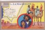 ¤¤  -  MAURITANIE   -  Colonie Française  -  Edition Des Produit Du Lion Noir  -  ¤¤ - Mauritanie