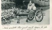 CPA IRLANDE DU NORD GOING TO MARKET 1903 - Northern Ireland