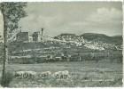 Italy, Assisi, Panorama Generale, Used Postcard [P9818] - Perugia