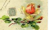 Illust - KLEIN - Roses - Klein, Catharina