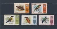 SOLOMON 1975 OISEAUX   SCOTT N° NEUF MNH** - Oiseaux