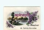 Br - 85 - SAINTE HERMINE - Un Bonjour De ... - - Sainte Hermine