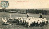 CPA  LIMOUSIN BERGERE ET SES MOUTONS - Limousin