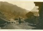 TOLMEZZO  COSTUMI    1934 - Udine
