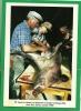 APRES LA CHASSE ON DEPIAUTE LE SANGLIER A MOSSET CHEZ JEAN SARDA OCTOBRE 1988 - France