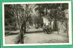 EL GOLEA  - UNE RUE  30 - Algérie
