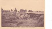 20747 Camp De COETQUIDAN (56 France) - Cavalerie - Distribution De Fourrage -2Gabriel -cheval Foin Militaire