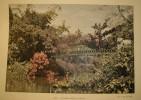 Birmanie - Un Jardin à Pointe De Galles - Début XXe. - Places
