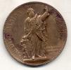 ADOLFO ALSINA (1829-1877) 1881 MEDALLA AIME MILLET ESCULTOR GRAND FORMAT BUEN ESTADO - Jetons & Médailles
