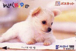 Carte Prépayée Japon / Série KIDS 2 - 45-51 - ANIMAL - CHIEN CHIHUAHUA - DOG Japan Prepaid Card - HUND Metro  Karte - Japón