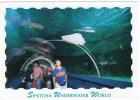 SINGAPORE-SENTOSA UNDERWATER WORLD / OCEANARIUM / FISHES - Singapore