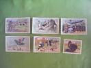 6 Chromos-leopold Verger-felix Potin L.v & Cie-aeroplane-canotage-la Chasse-a Bicyclette-sous Marins-dindon Serie Educa - Chocolat
