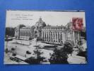 PARIS Champs élysées Le Petit Palais Animé Fiacres Et Tractions Cpa  Type Tcv - Monuments