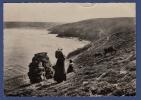 29 CLEDEN-CAP-SIZUN Baie Des Trépassés Pointe Du Raz Tricoteuses ; Vaches - Animée - Cléden-Cap-Sizun