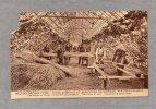 30089    Belgio,   Mont-Saint-Guibert,  Ecole  Agricole  Et  Horticole  De  Bierbais, Les  Eleves Au Travail,  NV - Mont-Saint-Guibert