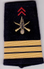 Manchon Capitaine Infanterie - Armée De Terre France - Uniformes