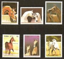Cuba 1995 Yvertn° 3455-3460 *** MNH Cote 12,50 Euro Faune Chevaux Horses Paarden - Cuba