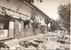 Haute Savoie - 74 - St Jorioz - Lac D'annecy Chalet Bar Restaurant Thé Dansant , Ed Photo Hybord - Annecy