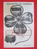 01 SOUVENIR DE CERDON MULTIVUES DANS TREFLE   CPA  Ref BDN190612 - France