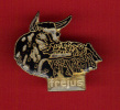 22767-pin's Corrida.arenes De Frejus - Bullfight - Corrida