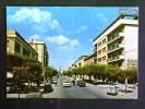 PUGLIA -FOGGIA -SAN SEVERO -F.G. LOTTO N°187 - Foggia