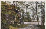 BRUYERES Les Roches De L'Avison - Neuve TTB - Bruyeres