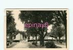 Br - 85 - CHALLANS - Le Jardin Public - édit. Nozais - - Challans