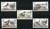 0492 - GB-GUERNSEY-ALDERNEY - Mi. 13-17 Postfrisch, Vögel - Mnh Set, Birds - Alderney