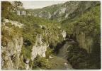 48-128 - La Lozère Pittoresque - Gorges Du Tarn - Les Détroits - Petite Animation - Circulée 1980 - Scan Recto-verso - Gorges Du Tarn