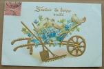 Carte Gauffrée Brouette De Jardinier Avec 3 Tourterelles Souvenir De Bonne Amitié - Fantaisies